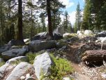 Sierras are pretty rocky actually