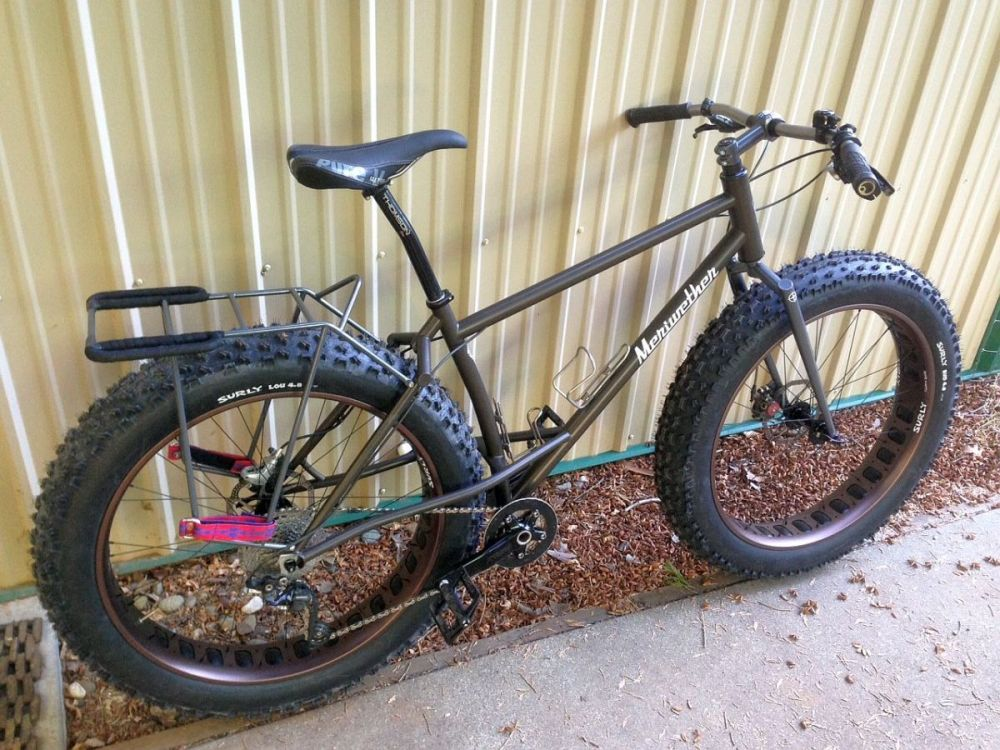 Elevated chainstay fatbike (2/6)