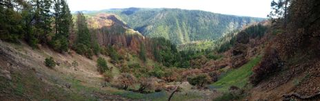 Devils Thumb Panorama. Fire damage visible.