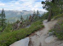 TRT view back towards Mt. Rose