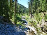 Pauley Creek